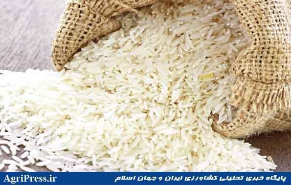 چیزی به نام برنج آلوده نداریم/ «برنج آلوده» دستاویز افزایش قیمت برنج داخلی به ۱۰تا ۱۵ هزار تومان بود