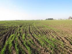 تخریب خاک را بهاندازه کمبود آب جدی بگیریم
