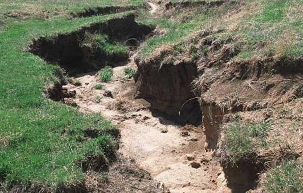 کشاورزی پایدار، حفظ پایدار خاک (۲)