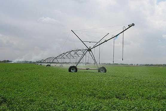 سالانه ۲۵ درصد تولیدات کشاورزی کشور به ضایعات تبدیل میشود