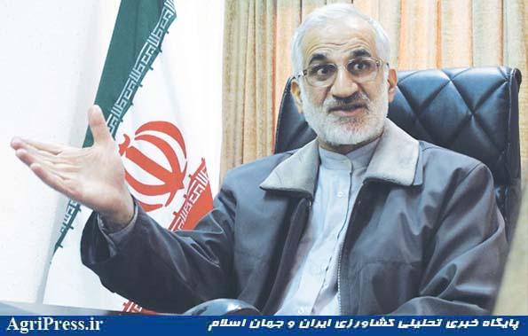 عبدالمجید شیخی