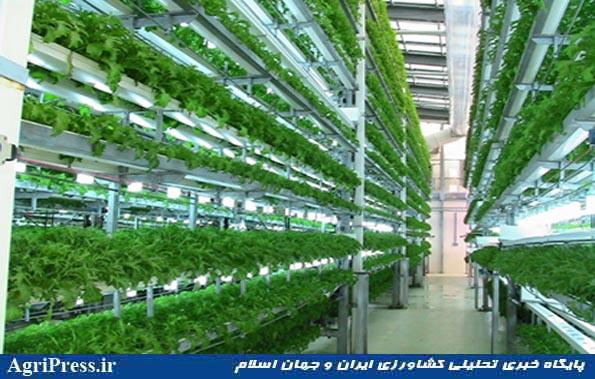 کشاورزی شهری 3