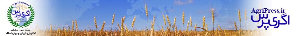 پایگاه خبری تحلیلی کشاورزی اگری پرس/agripress.ir