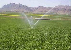 صادرات محصولات کشاورزی آزاد شد