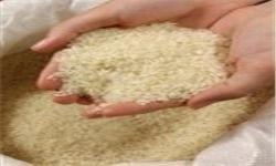 توزیع برنج و شکر میان هیئت های مذهبی برای جلوگیری از افرایش قیمت