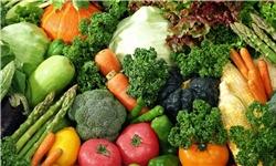 پیاز و سیبزمینی دیگر روی دست کشاورز نمیماند/ احداث سردخانه در قطبهای تولید محصول جالیزی