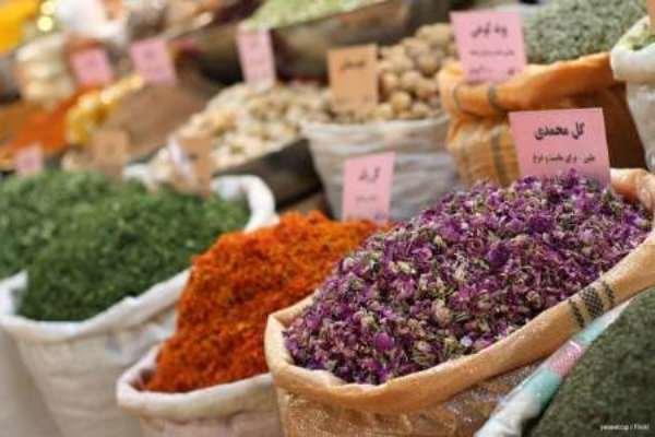 ارزآوری ۲.۵ میلیارد دلاری صادرات «گیاهان دارویی» تا ۵ سال آینده