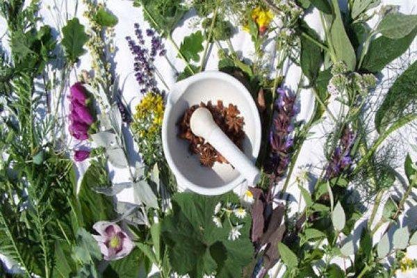 شرایط جدید صادرات گیاهان دارویی/تسهیل شرایط صادرات