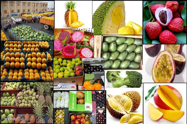 تولید داخل، قاچاق میوه را زمینگیر کرد/ کسی اقدام خاصی نکرد