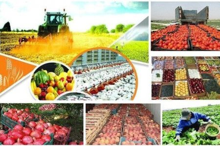 اقتصاد غیرشرطی  رشد میانگین سالانه ۴٫۳ درصد تولید کشاورزی در اوج تحریم
