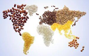 گرسنگی در دنیا به بالاترین رقم طی ۱۵ سال گذشته رسید